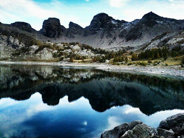 randonnee montagne lac d allos - la flore du mercantour