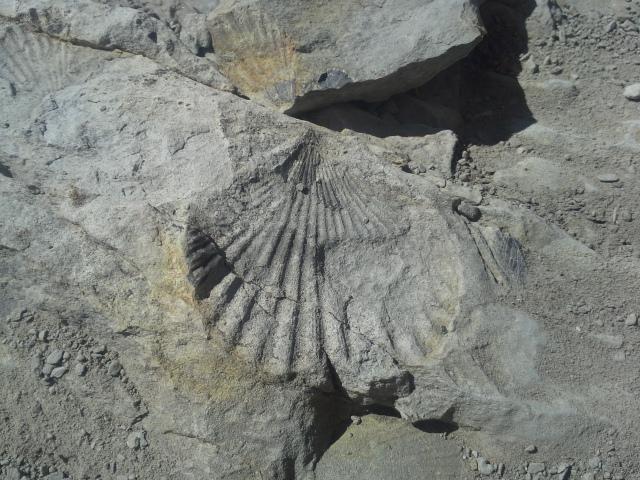 verdon tourisme - geologie